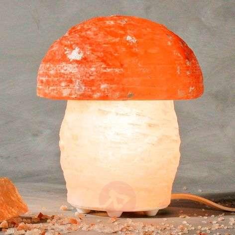 Upea sienenmuotoinen suolavalaisin PILZ