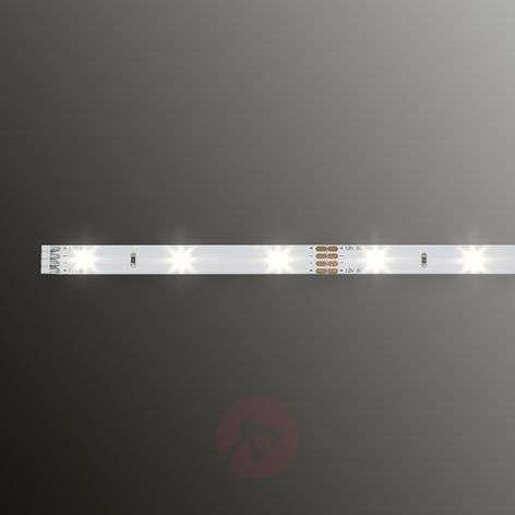 YourLED – LED ECO -nauha, 50cm, lämmin valkoinen